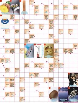 Сканворд  16x21 клеток (~192x252 мм.), А4 вертикальный с фото и картинками