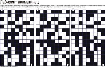Головоломка Лабиринт далматинец В2, детская головоломка
